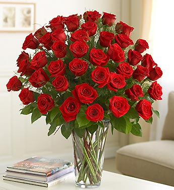 Four Dozen Long Stem Red Roses
